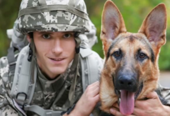 Soldier in BDUs with military canine