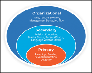 Affirmity's workforce demographics diagram with the organizational, secondary and primary goals we recommend tracking