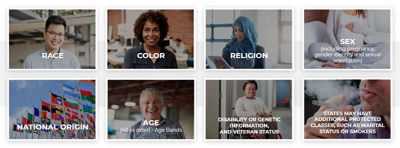 A collection of classes protected by law against discrimination, including race, ethnicity, sex (including pregnancy, gender identity, and sexual orientation), age (40 or over), disability, religion, national origin, genetic information, and, veteran status